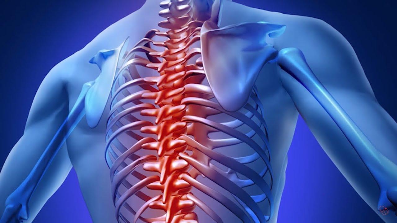 דלקת שדרה מקשחת ומחלות אוטואימוניות של עמוד השדרה: מאפיינים, גורמים ושכיחות