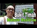 Travel to Singapore Bukit Timah Nature Reserve (Sabahan Youtuber)