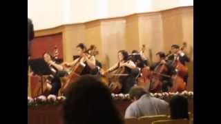 nhạc cổ diển hòa tấu kèn,dòng nhạc cụ Vi-ô-lông,trống