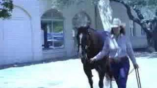 2007 American Quarter Horse Assn. NCHA Broodmare of the Year Smart Little Thunder