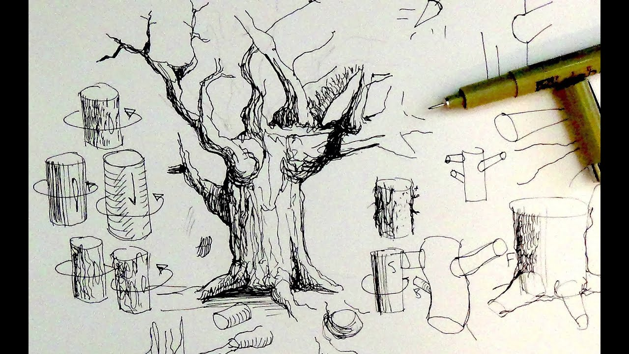 Pen Ink Drawing Tutorials How To Draw Tree Trunks Branches