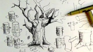 Pen & Ink Drawing Tutorials | How to draw tree trunks & branches