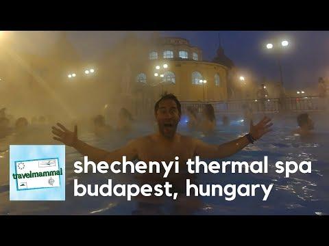 Széchenyi Medicinal Bath | Budapest, Hungary