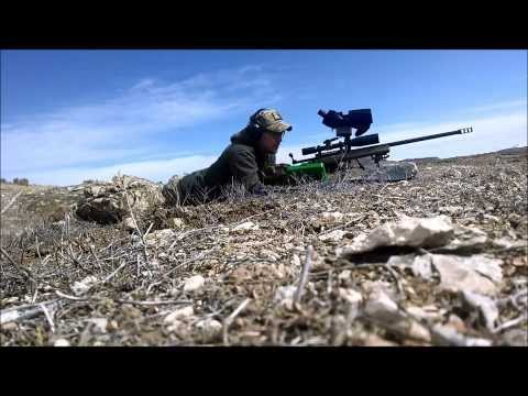 Savage 110 FCP .338LM at 600m and 1150m