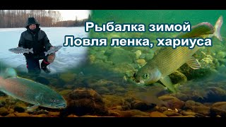 Зимняя рыбалка ловля ленка хариуса