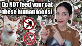 What human foods are HARMFUL, TOXIC, or even FATAL to cats? 🙅🏼‍♀️🙀