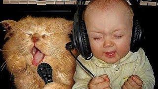 Słodkie Koty I Psy Kochają Dzieci - śmieszne filmy 2015
