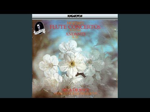 Concerto for Flute and Orchestra No. 1 in G major K. 313: II. Adagio non troppo
