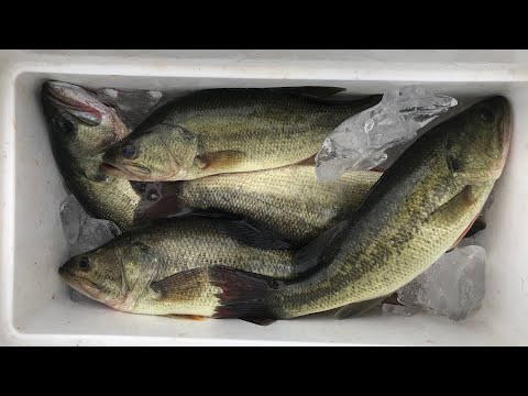 9/18 - Sacalait Or Bass?? Henderson, Louisiana Fishing