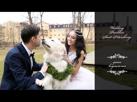 сколько стоит фото свадьбы
