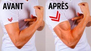 6 Exercices Simples Pour Avoir des Bras Plus Gros Sans Salle de Sport