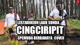 Download Mp3 Cingciripit - 3pemuda Berabahaya Cover