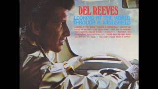 del reeves looking at the world through a windshield