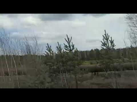 Обзор дороги в Берёзовский  Свердловская область . Всем привет 😉😆👍❤