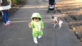 1歳4カ月でやっと外で歩き始めた孫の楓・・・ 元旦の午後、暖かだった...