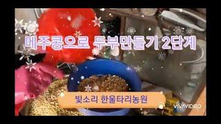 메주콩 두부만들기 2단계[콩갈기]