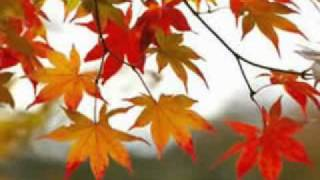Andy Williams singing Autumn Leaves -photos from Branson, MO