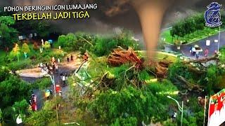 Download ALLAHUAKBAR!! Pasca Semeru Erupsi, Pohon Beringin Ikon Lumajang Usia 141th Tumbang Terbelah Tiga