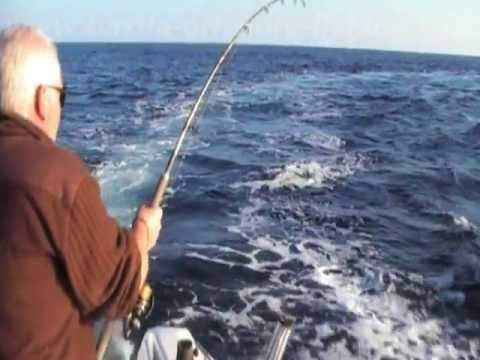 thon rouge en vertical, projet handicap session 3 by Bastia Offshore Fishing Club