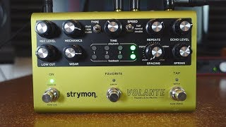 Strymon Volante - 10 Magnetically Beautiful Ambient Sounds!