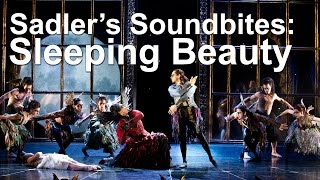 Sleeping Beauty - Sadler