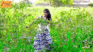 धीरे-धीरे जंपर लगा करिया को DJ टूट जावे new song 2018 Parkash mali (न्यू राजस्थानी सॉन्ग)