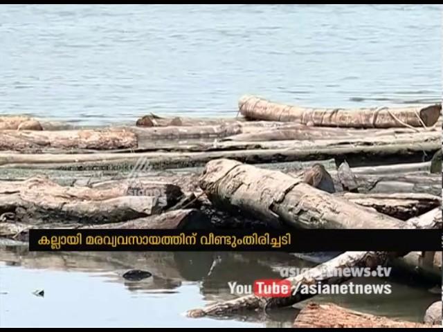 Kallayi Timber industry facing shutdown threat in Kerala