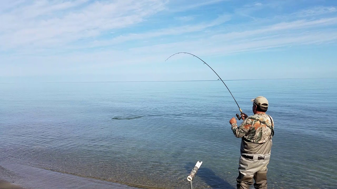 Steelhead fishing lake erie youtube for Lake erie fishing report 2017