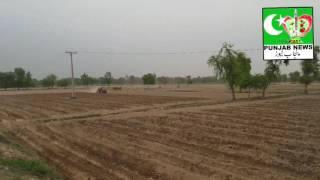 پنجاب نیوز پاکستان