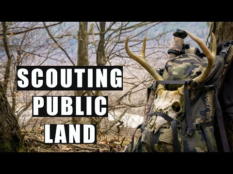 Scouting New Public Land