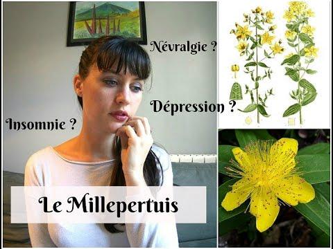 Achat Griffonia Simplicifolia - Troubles anxieux (déprime, angoisse) - Traitements
