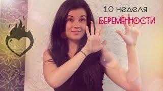 видео 10 неделя беременности