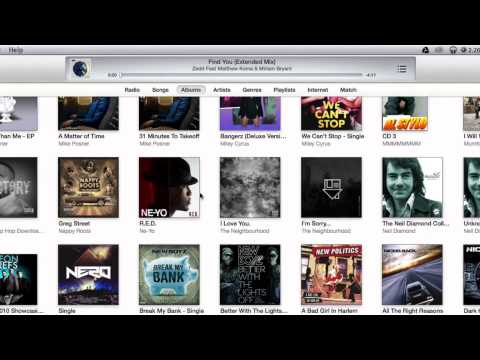 How to manually manage music in itunes!