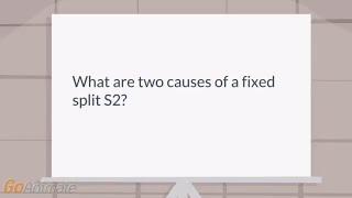 Wide Split S2 Causes Kopermimarlik