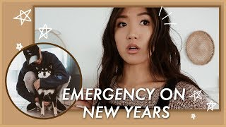 spent-new-years-in-the-emergency-room-wahlietv-ep633