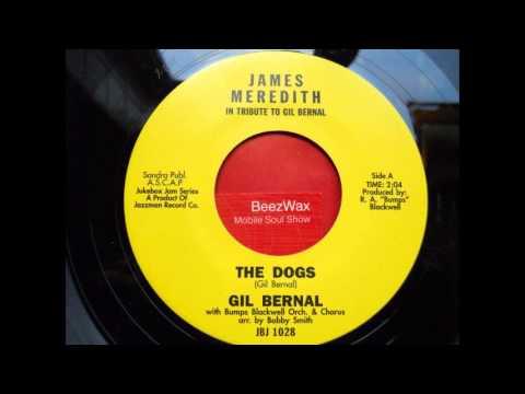 gil bernal - the dogs