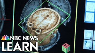 NBC News Learn: The Brain's Ability to Process Information thumbnail