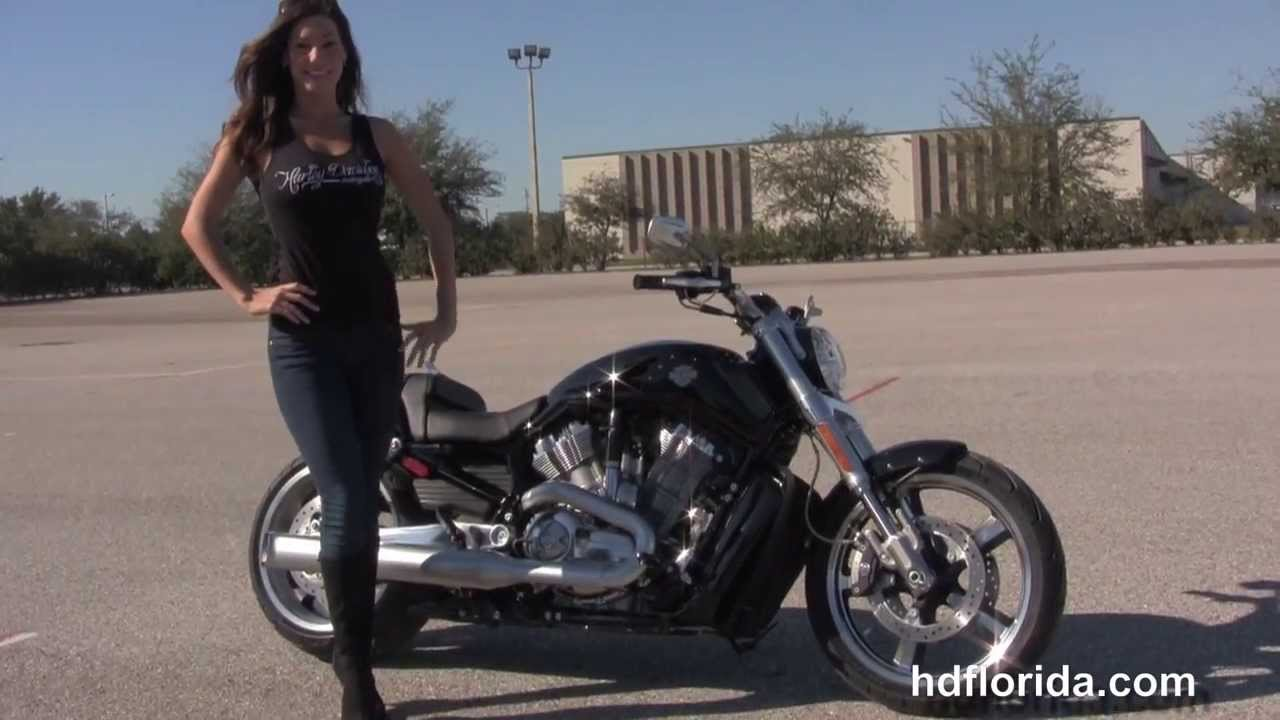 New 2014 Harley Davidson V-Rod Muscle Motorcycle for sale - YouTube