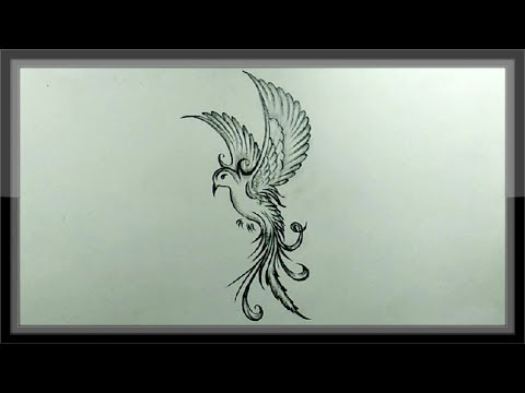 pencil-drawing-and-shading-a-beautiful-flying-bird-easy