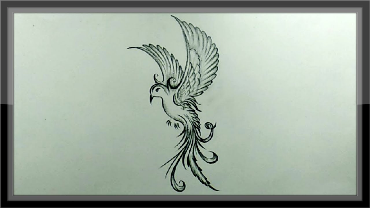 Pencil drawing and shading a beautiful flying bird easy