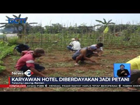 Meredam Dampak COVID-19, Karyawan Hotel Tanjung Lesung Diberdayakan Jadi Petani - SIS 03/05