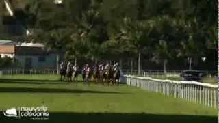 Coupe Clark - Horse Racing in Nouméa