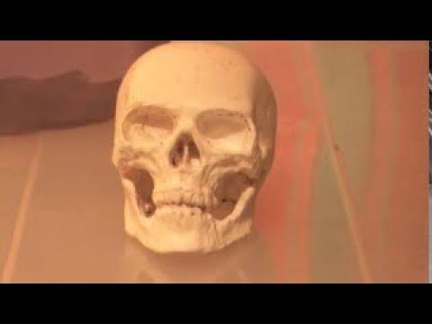 Форма для гипса из силикона своими руками. - YouTube