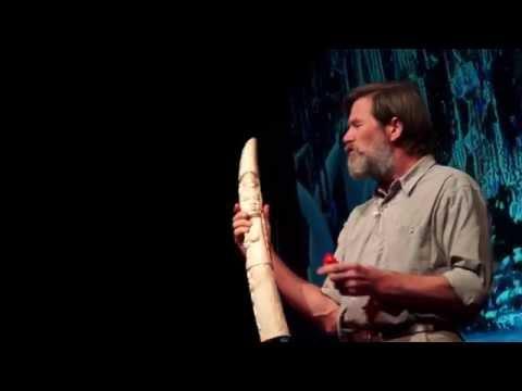 The gardeners of the forest   Ian Redmond   TEDxSouthamptonUniversity