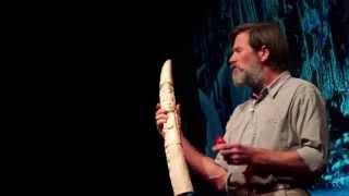 The gardeners of the forest | Ian Redmond | TEDxSouthamptonUniversity