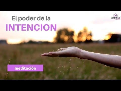mindfulness-meditacion-20-minutos:-el-poder-de-la-intencion-🙏|-actívalo-en-ti!
