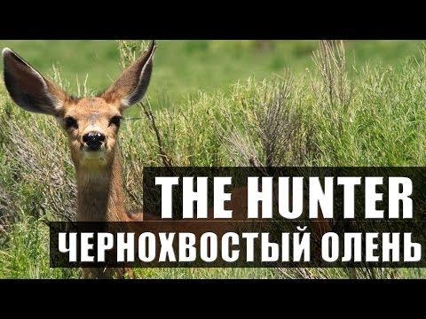 ООО ТД «УСЭК» (Компания «ЭТМ»), г. Екатеринбург