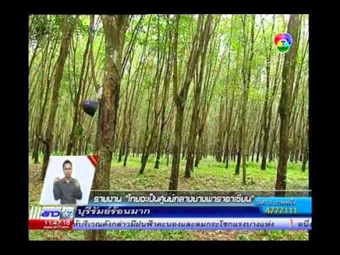 รายงานพิเศษ : ไทยจะเป็นศูนย์กลางยางพาราอาเซียน