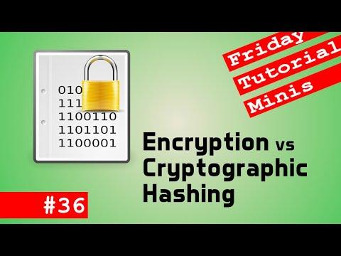Encryption vs Cryptographic Hash - Friday Minis 36