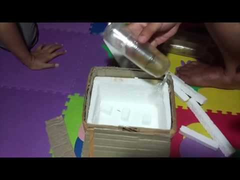 """Bad Unboxing HB Red Brazilian Fantail """"Dead Fish"""""""